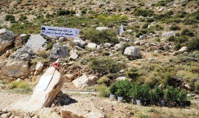 البطريرك الراعي يطلق مشروع التحريج من جرود الديمان