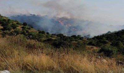 بالصورة: حريق في الكواشرة– عكار