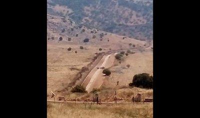 إسرائيل تكثف دورياتها على الحدود