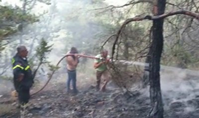 اخماد حريق في احراج زغرتا