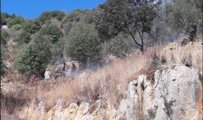 حريق أعشاب وأشجار في مجدليا