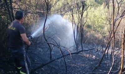 بالصورة: حريق أعشاب وأشجار وسيارة في خلة