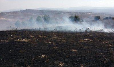 بالصورة: حريق في حولا