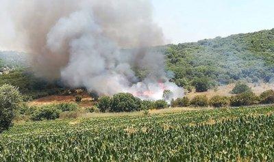 حريق في رميش