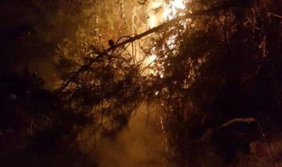 حريق اعشاب واشجار في دير دوريت