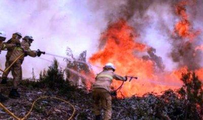 ارتفاع حصيلة الحرائق في البرتغال وإسبانيا إلى 45 قتيلاً