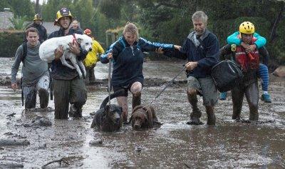 بالفيديو: الفيضانات الطينية في كاليفورنيا تحصد 17 قتيلاً
