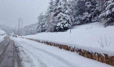 طريق عيناتا الارز مقفلة بالثلوج