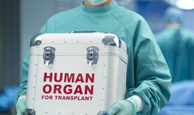 قانون جديد لتنظيم تجارة الأعضاء البشرية!