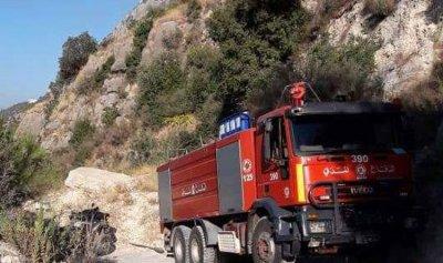 بالصورة: إندلاع حريق كبير في أحد الأحراج البرية في فتري جبيل