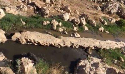 فيفي كلاب: لإجبار المعامل على تكرير المياه المبتذلة قبل رميها في مجرى نهر الليطاني