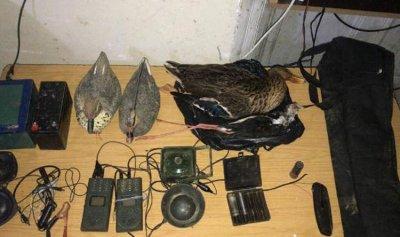 توقيف شخصين لتأجيرهما أدوات لصيد الطيور