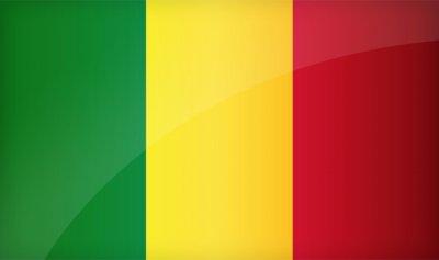 رئيس مالي يؤجل استفتاء مثيراً للجدل