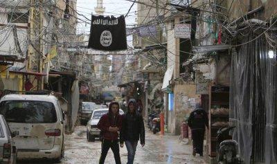 """الجيش أوقف أحد عناصر """"داعش"""" في عين الحلوة"""