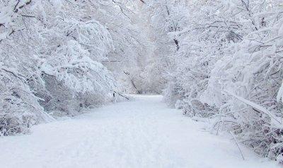 الثلوج قطعت طرقاً في الشوف