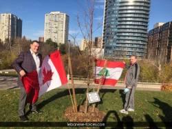 """غرس شجرة لـ\""""قوات\"""" تورونتو تخليداً لشهداء انفجار مرفأ بيروت"""